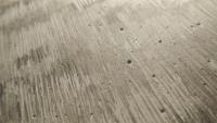 """graphite on plaster on walnut 7""""x5"""""""